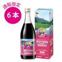 ブルボンボイセンベリー700ml×6本果汁100%(濃縮還元)【送料無料】
