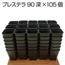 プレステラ90深鉢(105個セット)ブラック プラスチック鉢2.5号鉢 実生 育苗 多肉植物 サボテン 用