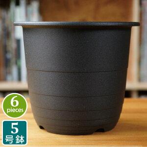 プラ鉢 5号 5FR (6個セット) 黒 ブラック プラスチック鉢 5号鉢 実生 育苗 多肉植物 サボテン タニサボ
