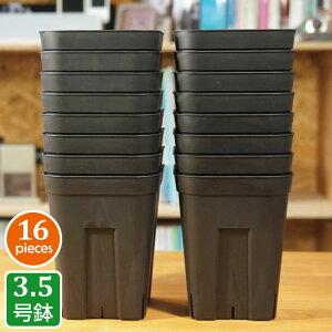 プレステラ120深鉢(16個セット)ブラック プラスチック鉢 3.5号鉢 実生 育苗 多肉植物 サボテン 用