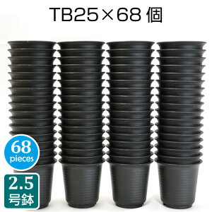 プラスチック鉢 TB25(68個セット) 2.5号鉢 実生 育苗 多肉植物 サボテン