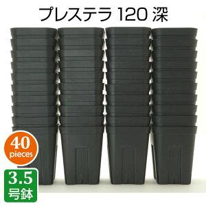 プレステラ120深鉢(40個セット)ブラック プラスチック鉢 3.5号鉢 実生 育苗 多肉植物 サボテン 用