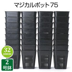 植木鉢 マジカルポット75(32個セット)黒 おしゃれ 鉢 2号鉢 実生 育苗 多肉植物 多肉 サボテン