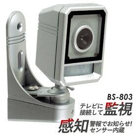 感知カラーカメラ 豊光 BS-803【防犯グッズ】