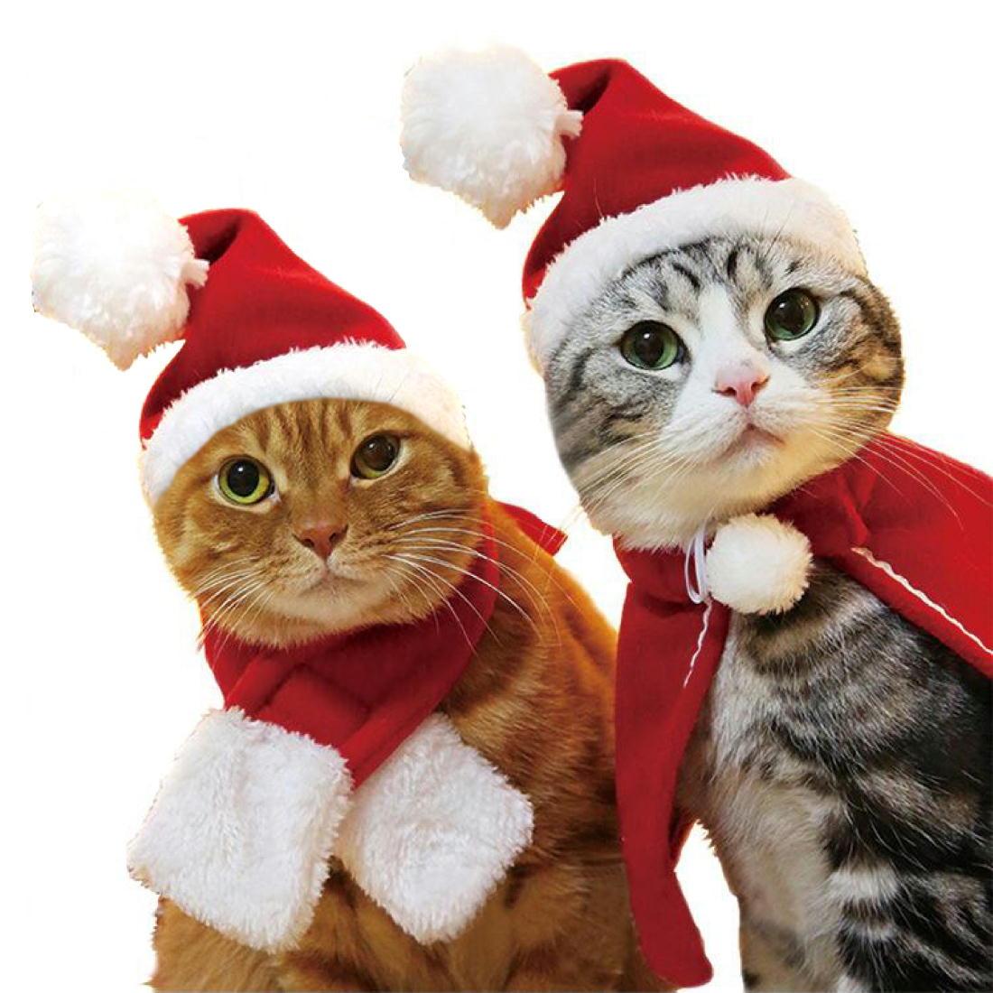 かわいい ねこサンタ 犬サンタ ペットコスチューム ペットスカーフ ねこサンタ帽子 ねこドレス 犬ドレス ペットクリスマス ねこケープ ねこちゃん衣装 わんちゃん衣装 小型犬衣装 ペット衣装 ペットコスプレ ねこサンタ衣装 いぬサンタ衣装