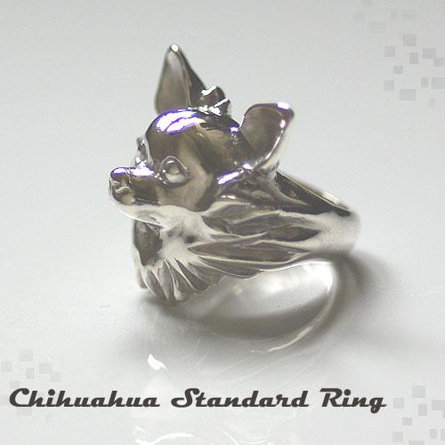 正面を見据えるチワワリング Standard Chihuahua Ring 【送料無料】 犬 わんこ リング 指輪 プレゼント r-05