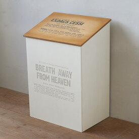 ふた付き 木製ゴミ箱 ダストボックス 30L用