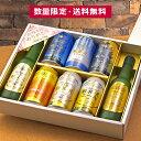母の日 プレゼント ビール ギフト 飲み比べ 送料無料 軽井沢ビール 限定セット クラフトビール 詰め合せ セット 330ml瓶×2本 350ml缶×6本