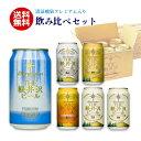 ビール 送料無料 クラフトビール 飲み比べ 詰め合せ セット 軽井沢ビール ギフト プレゼント お試 新発売 清涼飛泉 350ml缶×6本 N-DS