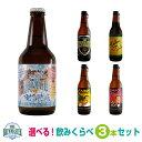 ★アイスクラフトビール★新製品プレミアムアイスブルーマスターと当店定番クラフトビールの3本セット!定番ビールは…