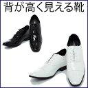 【レンタルシューズ】007靴を履くだけで7センチ身長アップサイズ/24.5cm(黒のみ)/25cm/25.5cm/26cm/26.5cm【往復送料無料】〔結婚式...