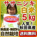 新米 『無農薬 ササニシキ 白米 5kg 』 2017年(平成29年)産 自然栽培  送料無料/ささにしき/ササニシキ 有機米/…