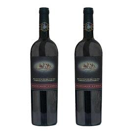 \赤ワイン 辛口 フルボディ DOC/イタリア プーリア産 プリミティーヴォ ディ マンドゥリア 750ml x 2本セット