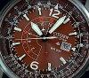 男性公民/PROMASTER 夜鹰太阳能手表棕色拨棕色皮带 BJ 7017 17 W (海外模型)
