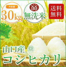 29年産米厳選のおいしい無洗米。