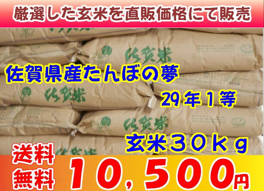 玄米 佐賀県産たんぼの29年1等 玄米30kg 送料無料(但し北海道・沖縄・離島を除く)