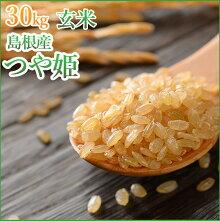 玄米島根県産つや姫令和2年1等玄米30kg送料無料