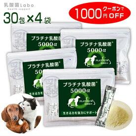 乳酸菌 ペット 健康 免活 サプリ プラチナ乳酸菌5000α(30包×4)【栄養補助 栄養補給 健康食品 犬 猫 うさぎ フェレット】