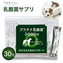 乳酸菌 ペット 健康 免活 サプリ プラチナ乳酸菌5000α(30包入)【犬 猫 うさぎ フェレット 老犬 老猫 】
