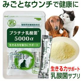 ペットサプリ 犬 猫 プラチナ乳酸菌 5000α (1g 5包入)動物用サプリメント