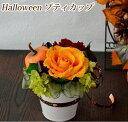 プリザーブドフラワー 手作りキット【送料無料】ハロウィンアレンジ ギフト プレゼント 人気 可愛い 贈り物 結婚式 誕生日 お洒落 お祝…