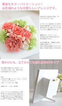 【完成品プリザーブドフラワー】カーネーションが入って母の日にオススメ!贈り物やプレゼントに。フレームタイプで思い出のお花を長く楽しめます。