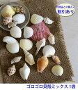 【ゴロゴロ貝殻ミックス】手作りキット、出来上がり完成品との同時購入割引で500円オフ■手作りキット 貝殻■貝がら アソート■貝が…