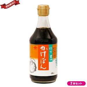【ポイント6倍】最大31倍!ぽん酢 ポン酢 ゆず チョーコー ゆず醤油かけぽん 400ml 2本セット