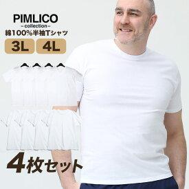 肌着 大きいサイズ メンズ 肌着セット 3L 4L 5L 6L 7L 8L WEB限定 半袖 4枚セット 肌Tシャツ Vネック インナーウェア 綿100% ホワイト 白無地 PIMLICO アンダーシャツ tシャツ インナー 大きいサイズメンズ肌着のサカゼン