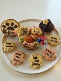 3点set★犬用ケーキシュークリームのプチケーキセット