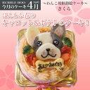 【4月のケーキ・さくら】ほんわか春のキャロット&ポテトの似顔絵犬用ケーキ!12cm(犬、ケーキ、春、さくら、お花見)★3月3日より販…