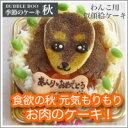 【秋のケーキ】食欲の秋 元気もりもり お肉のケーキ! 12cm (お誕生日ケーキ ワンコケーキ 犬用ケーキ 犬の誕生日 犬のおやつ 犬…