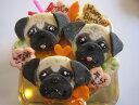 似顔絵ケーキ♪米粉18顔3個(お誕生日ケーキ ワンコケーキ 犬用ケーキ 犬の誕生日 犬のおやつ 犬ケーキ 犬のお祝い 犬のプレゼ…