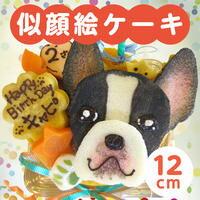 ★似顔絵ケーキ♪12cm 顔1個(ワンコケーキ 犬用ケーキ 犬の誕生日 犬のおやつ 犬のお祝い 犬のプレゼント)【楽ギフト名入れ】