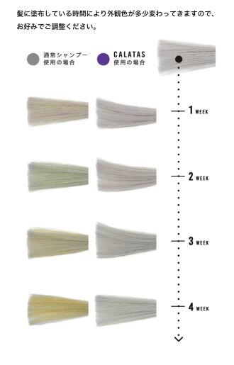 カラタスシャンプーNH+Pr(パープル)500ml(カラーシャンプー/ノンシリコンシャンプー/頭皮ケア/スカルプ/ノンシリコン/業務用)