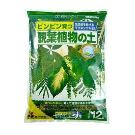 【あす楽対応・送料無料】(株)花ごころ観葉植物の土12L