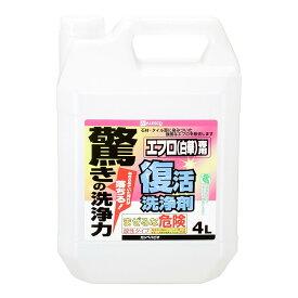 【あす楽対応】カンペハピオ復活洗浄剤エフロ用4L