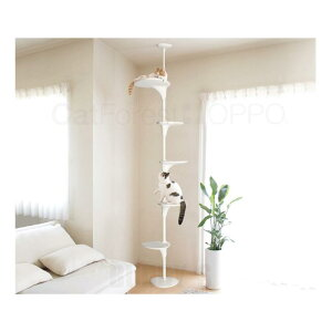 【送料無料】自由自在なキャットタワー♪ [正規品 OPPO(オッポ) CatForest (キャットフォレスト) ホワイト【猫 キャットタワー おしゃれ つっぱり】