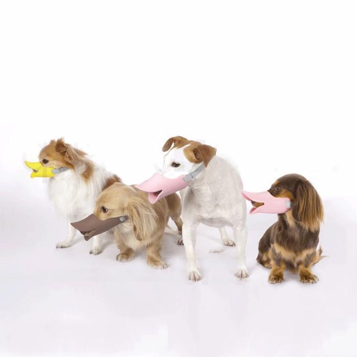 口輪に見えない口輪しつけ用や拾い食い・無駄吠え・噛み付き防止に。[正規品] OPPO(オッポ) quack (クァック) Lサイズ [全3色]【犬 しつけ 口輪 中型犬 噛み癖】