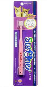【メール便対応可】 360°のペット用歯ブラシ シグワン 超小型犬用・猫用 歯ブラシ 【犬/猫/歯ブラシ/簡単】