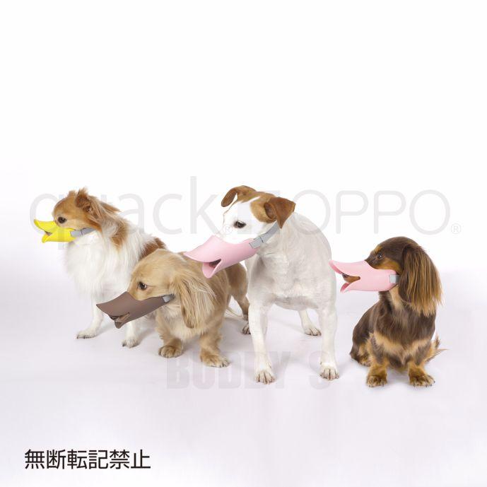 口輪に見えない口輪しつけ用や拾い食い・無駄吠え・噛み付き防止に。[正規品] OPPO(オッポ) quack (クァック) Mサイズ [全3色]【犬 しつけ 口輪 小型犬 噛み癖】