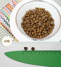 子犬のアレルギー療法食FORZA10フォルツァディエチダイエットシリーズパピーダイエットフィッシュ1.5kg【犬/子犬/アレルギー/皮膚/被毛】