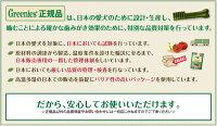 グリニーズプラス成犬用大型犬体重22〜456本入り【正規品】