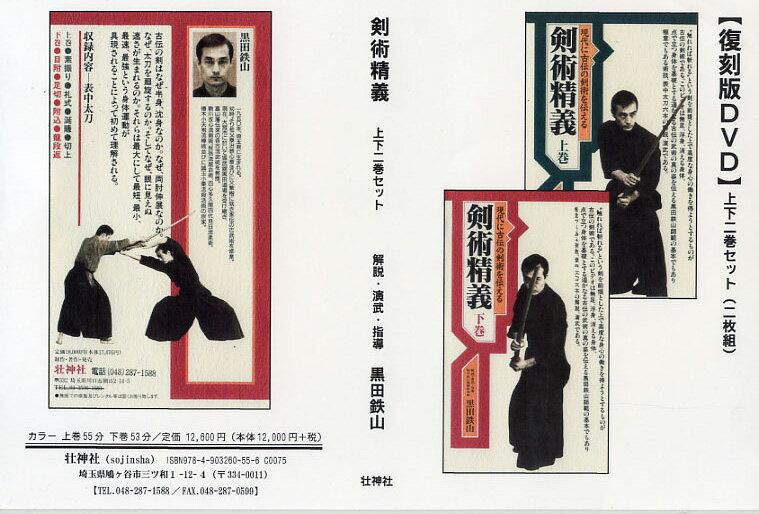 DVD剣術精義