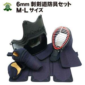送料無料 6mmピッチ刺剣道防具セット 中学生から一般向け サイズM/L