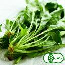 [有機JAS]山ほうれん草(150g) 無化学農薬/無化学肥料/有機栽培/国産/西日本/オーガニック【おいしくて安全な野菜宅配…