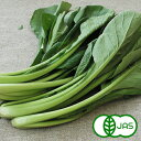 [有機栽培]小松菜(200g)