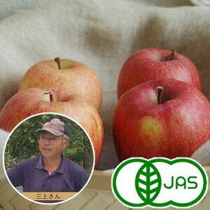[有機栽培] 三上さんのりんご (8kg前後)