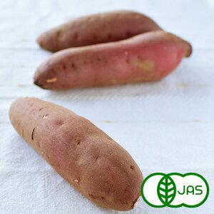 [有機栽培] 紅はるか (10kg)