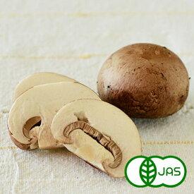 [有機栽培]ブラウンマッシュルーム(100g)
